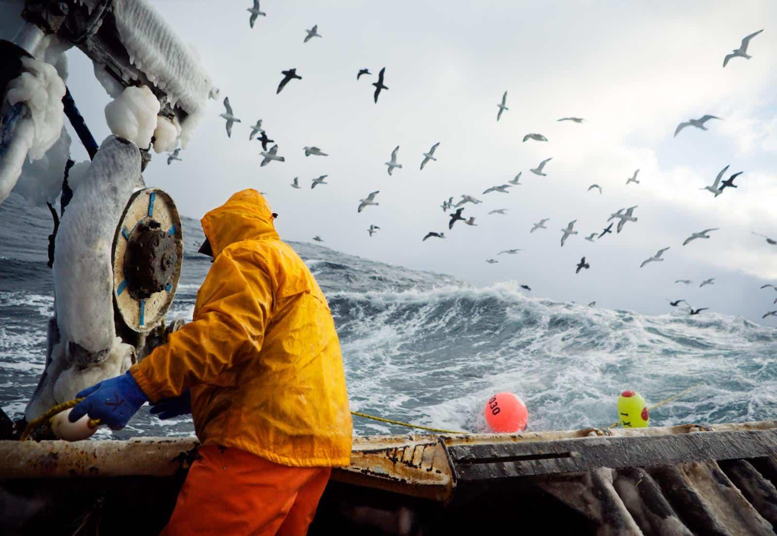 Работа для моряков в Крыму